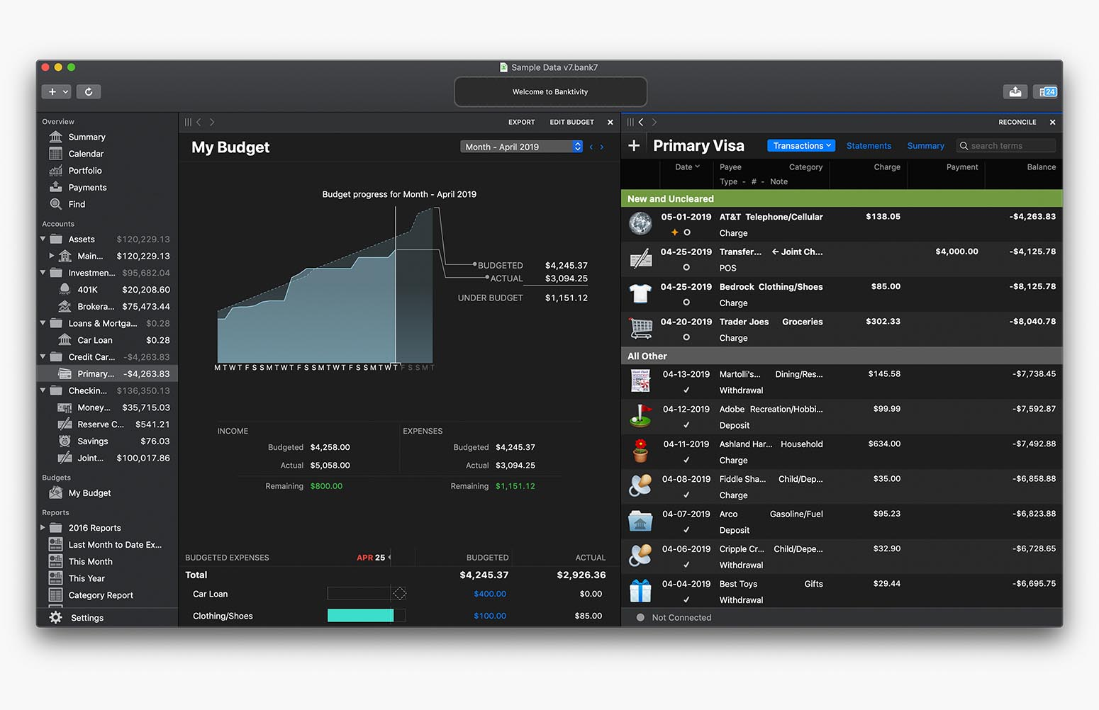 Banktivity register and budget in Dark Mode